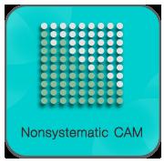 24-NonSystematicCAM
